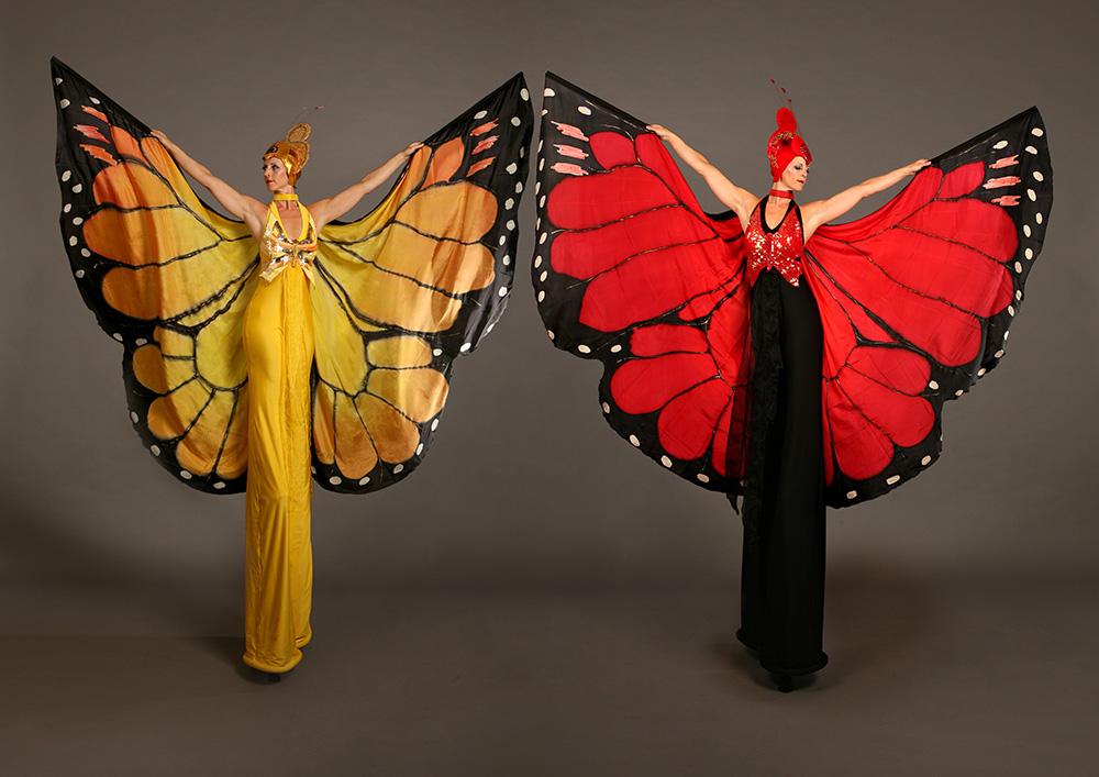 Mariposa Butterflies (1)