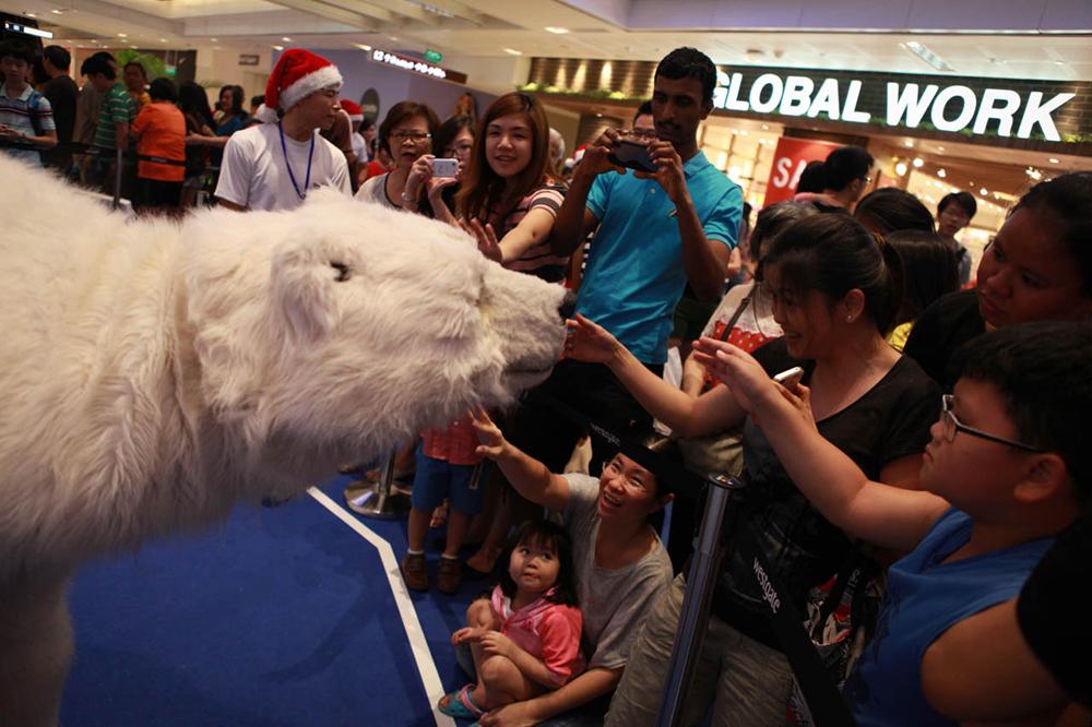polar bear singapore touch