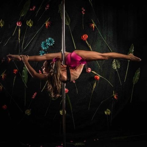 Pole performer