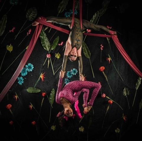 Cirque de Amazon
