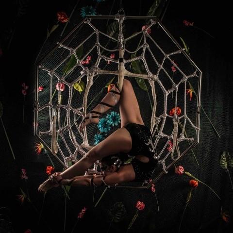 Spider web performer